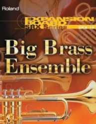 Imagem de Placa de Expansão Roland SRX-10 Big Brass Ensemble